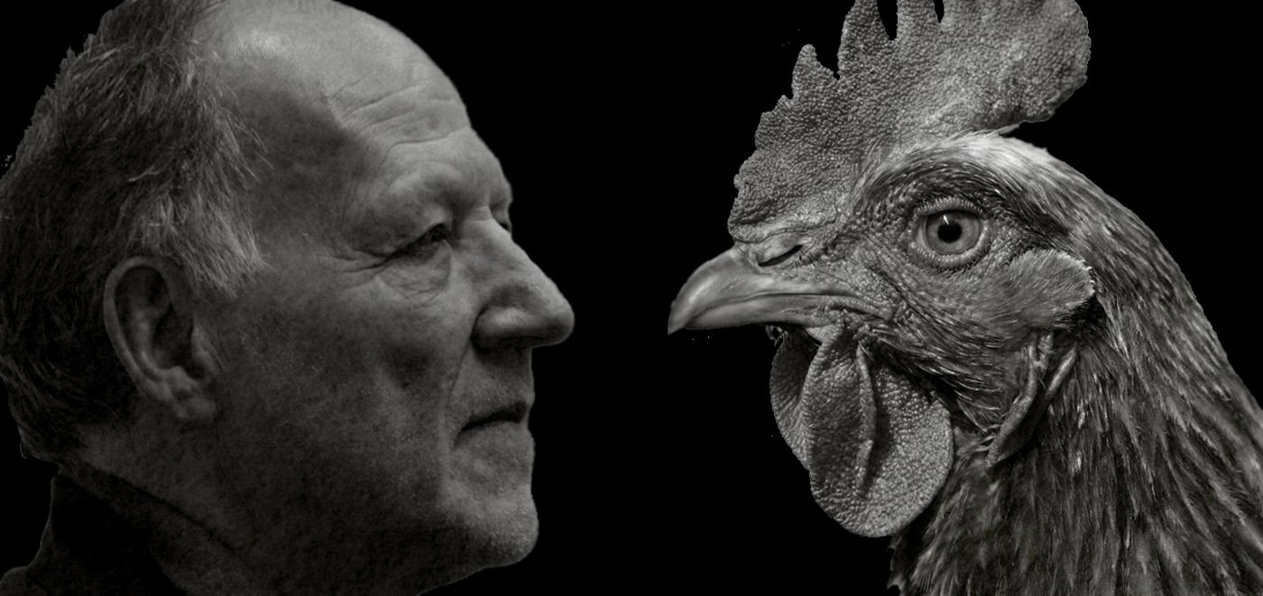 Stroszeggs – Werner Herzog vs. The Chicken